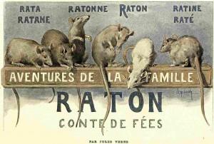 C_Raton_Figaro_01